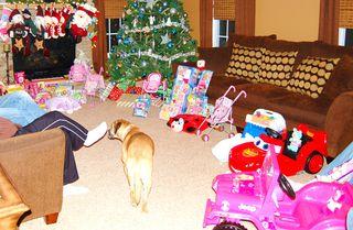 Christmas Dec. 2010 348